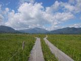 湿原と木道と山