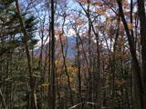 木々の間から見える男体山