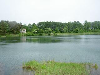 大座法師池