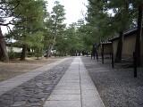 大徳寺 境内
