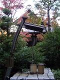 高桐院 井戸