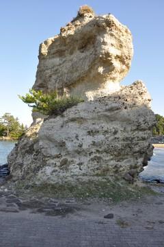 ソフトクリーム岩