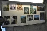 写真の展示