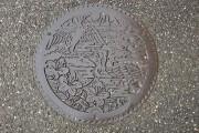 肱川の鵜飼いの鵜、鮎とツツジ