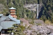那智滝と青岸渡寺