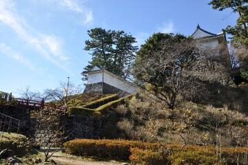 小田原城址公園