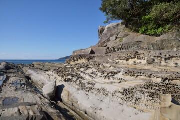 蜂の巣状の岩